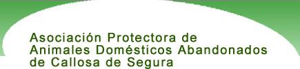 Asociación Protectora de Animales Domésticos Abandonados de Callosa de Segura